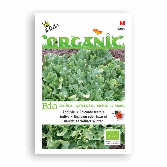 Buzzy® Organic Winterendivien Eskariol Grüner