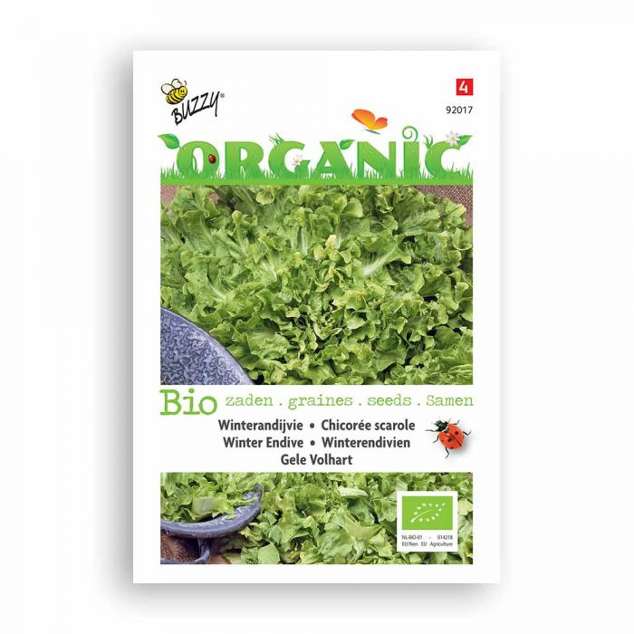 Buzzy® Organic Endivien Eskariol Gelber (BIO)