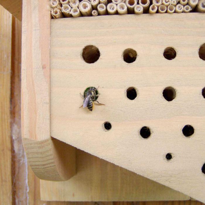"""Insektenhotel """"Formentera"""""""