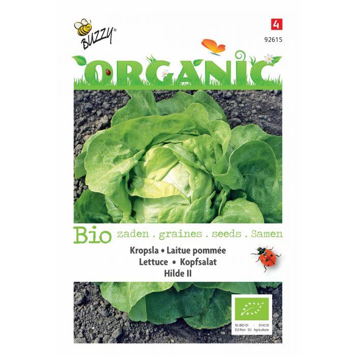 Buzzy® Organic Kopfsalat Hilde II (BIO)