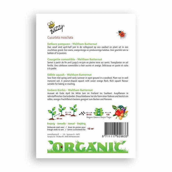 Buzzy® Organic Kürbis Waltham Butternut (BIO)