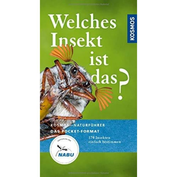 Welches Insekt ist das? - 170 Insekten einfach bestimmen