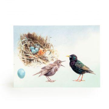 """Grußkarte """"Star mit Jungen und Nest"""""""
