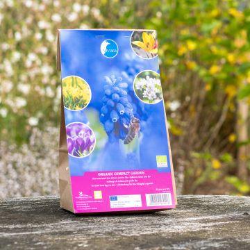 Blumenzwiebel-Mix Kleiner Garten Bio - 35 Stück (BIO)