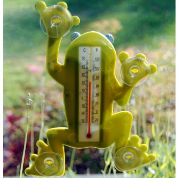 Fenster Thermometer `Frosch`