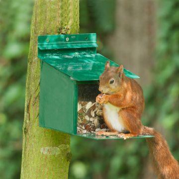 Eichhörnchen-Futterautomat XXL