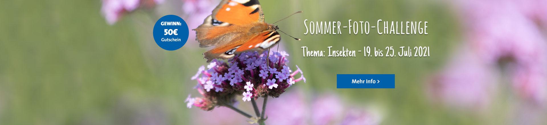 Sommer-Foto-Challenge