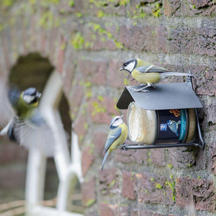 Gartenvögel-Erdnussbutter Original