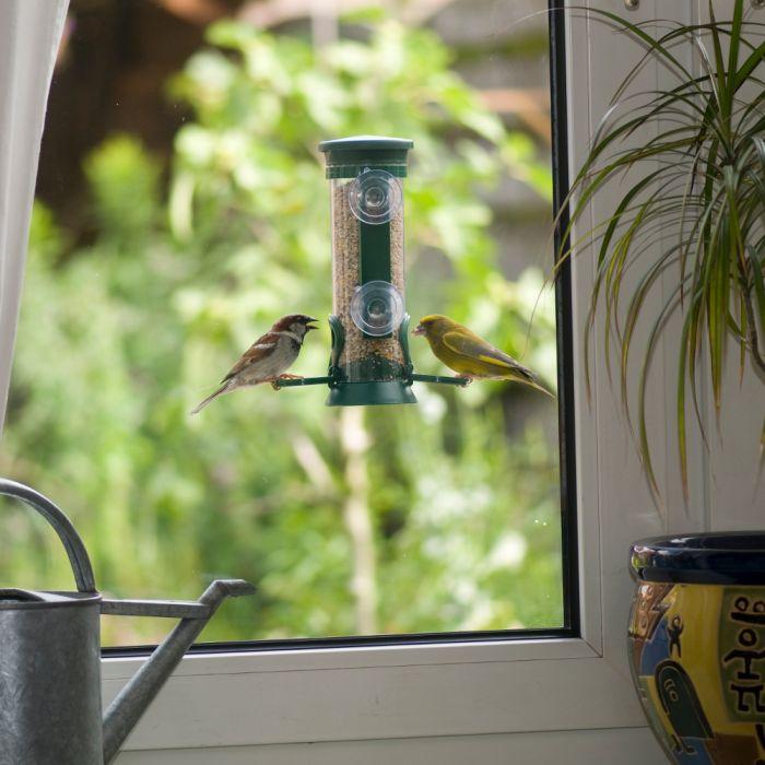Fenster-Futtersäule Samen