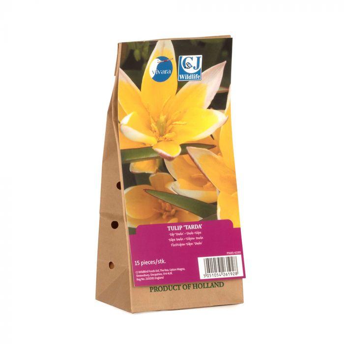 Biologische Tarda-Tulpe