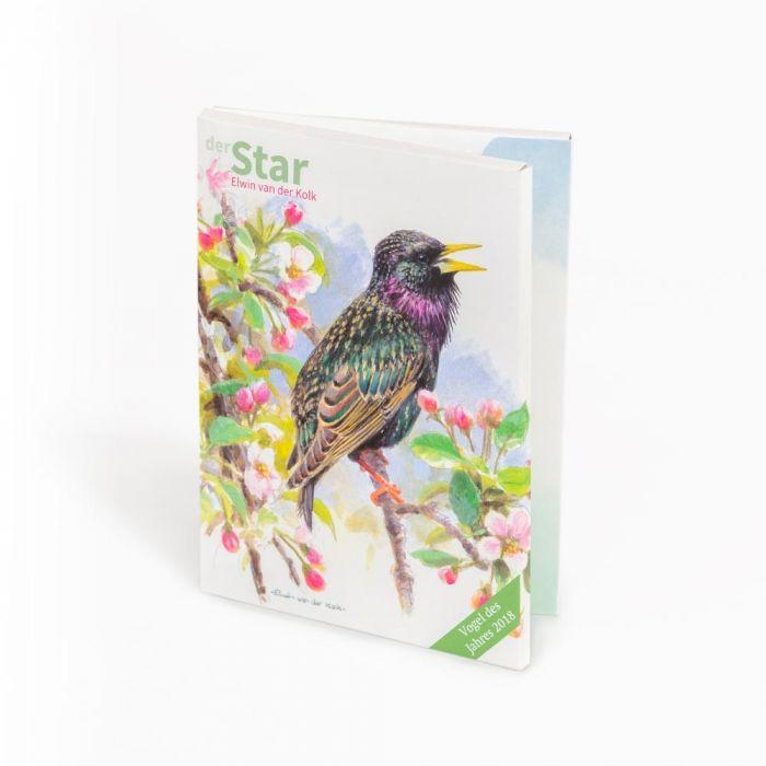 (10 Stück) Grußkarten-Set Star