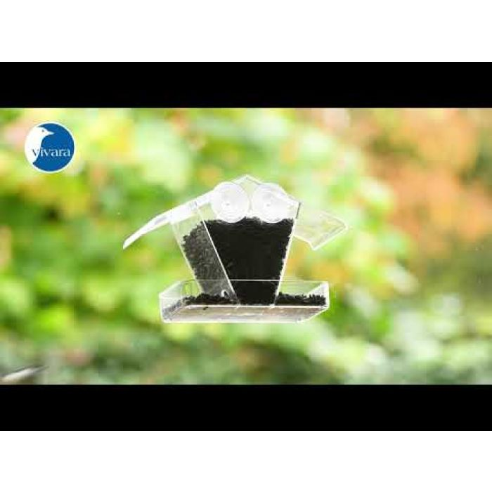 Schwarze Sonnenblumenkerne