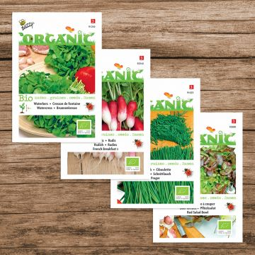 """Buzzy Organic Saatgut-Paket """"Salatmischung"""""""