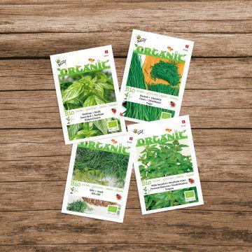 """Buzzy Organic Saatgut-Paket """"Kräutermischung"""""""