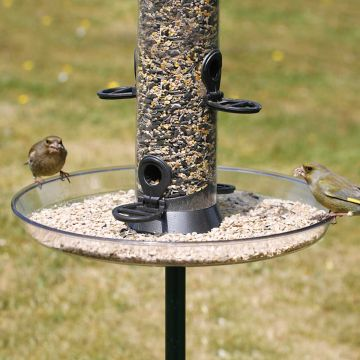 Large Feeder Tray
